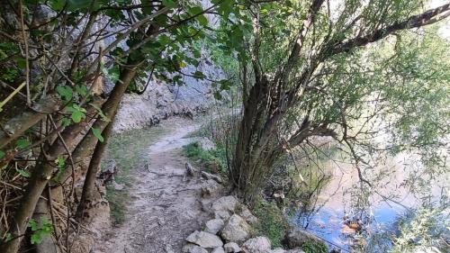 Kanjon Krupe