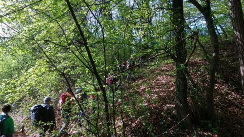 Dan Planinarskog društva Zagorske steze Zabok