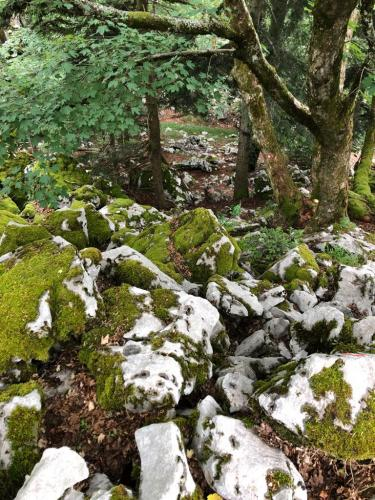 Grobničke alpe